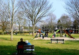 公園工事のイメージ